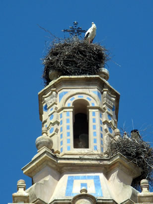 arahal-iglesia-del-santo-cristo-de-la-misericordia-torre