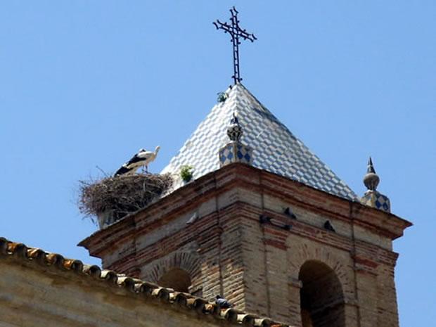 bornos-convento-del-corpus-campanario