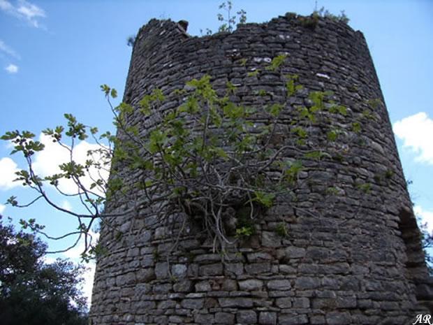 torre-del-paso-higuera-1