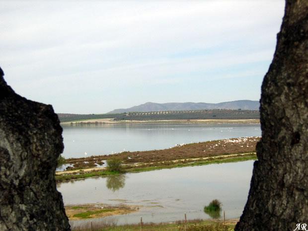 Mirador Cerro del Palo