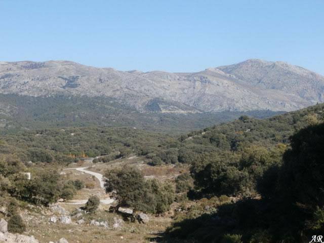 Parque Natural de Sierra de las Nieves, Sierra de las Nieves Natural Park Malaga