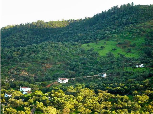 Venta de Finca con Casas Rurales en la Sierra de Aracena