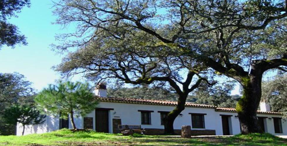 Venta de Finca con Casas Rurales en la Sierra de Aracena - Almonaster la Real - Farmhouse for Sale