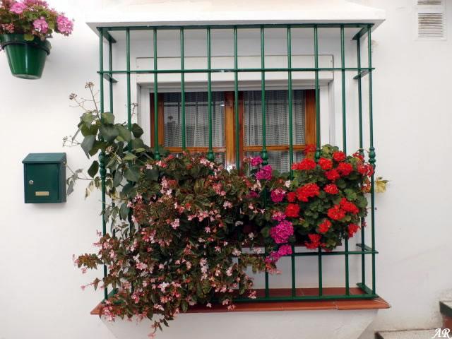 estepona-calle-pasaje-andaluz1