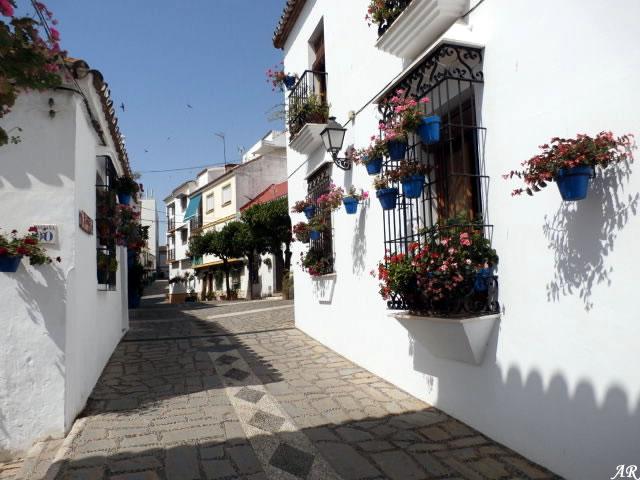 Calle Sirena