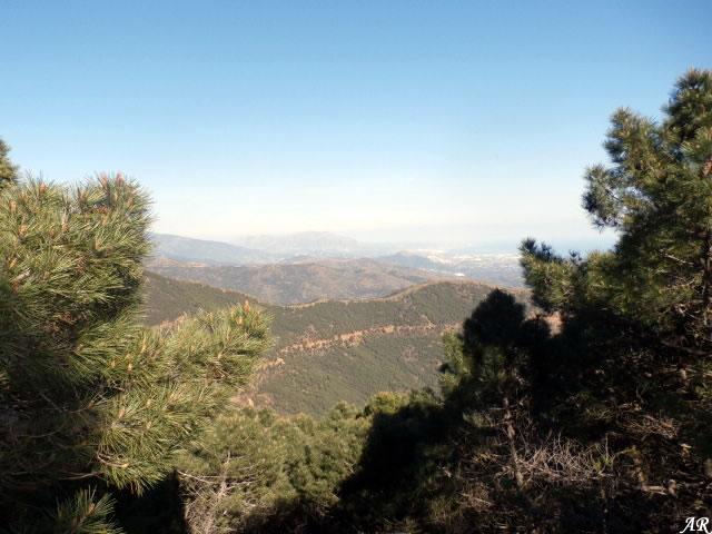 Path Fuente de El Torrejon SL-A 169 - Estepona - Jubrique