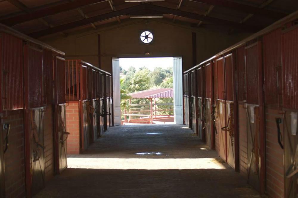 Equestrian Center For Sale In Guarroman Jaen