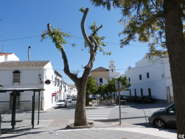 Osuna - Plaza Consolación