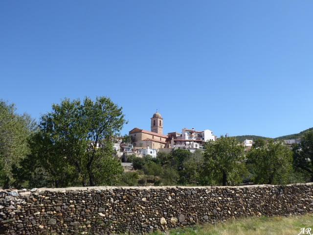 Ferreira Panoramic