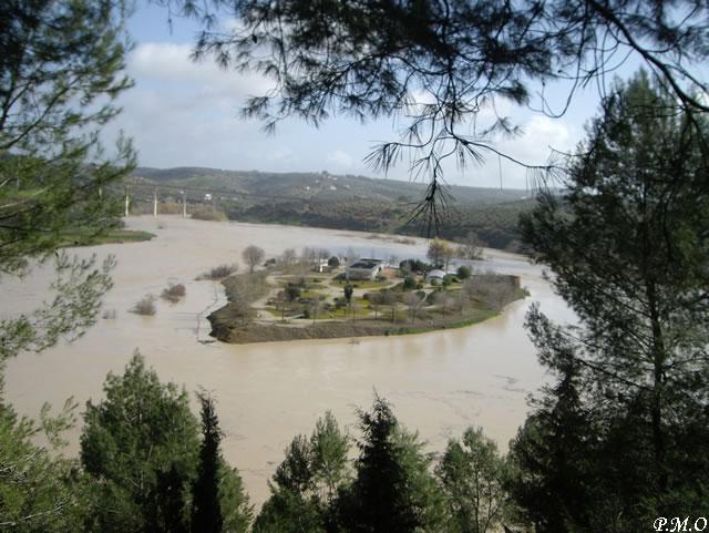 Montoro - Huerta de la Isla 2010 - Monumento Natural Meandro Encajado del Guadalquivir