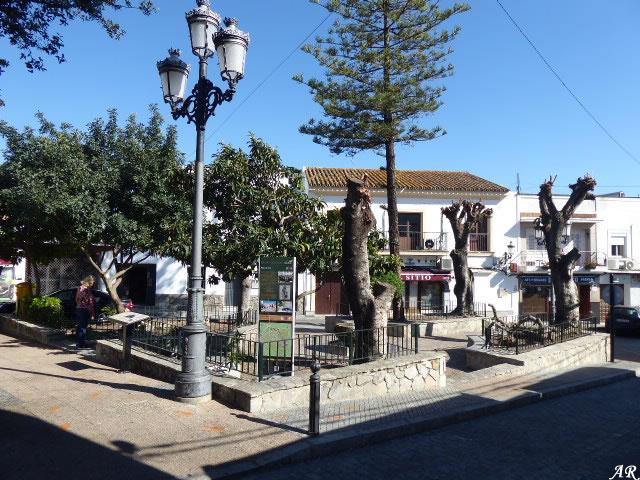 Plaza del Pijo