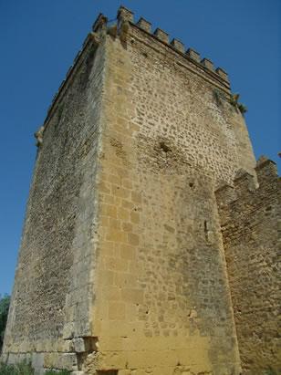 Castle of Las Aguzaderas