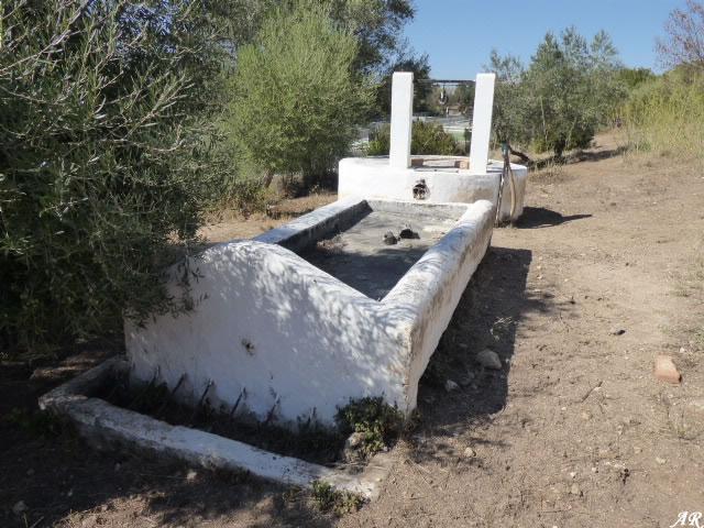 Fuente del Puntal - Fuentes y Manantiales de El Bosque