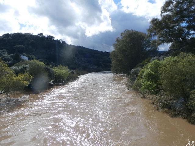 Río Hozgarganta
