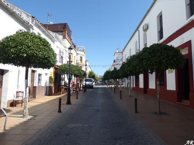 Calle Fuente - Prado del Rey