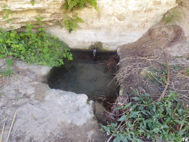 La Fuentecita - Fuentes y Manantiales de Setenil de las Bodegas