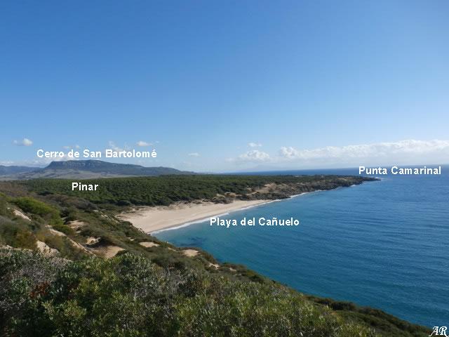 Playa del Cañuelo - Tarifa