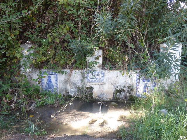 Fuente del Chaparral - Villamartín