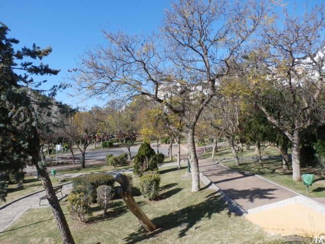 Escalerilla Park - Algarrobo