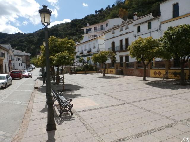 Alameda de Andalucía - Algatocín