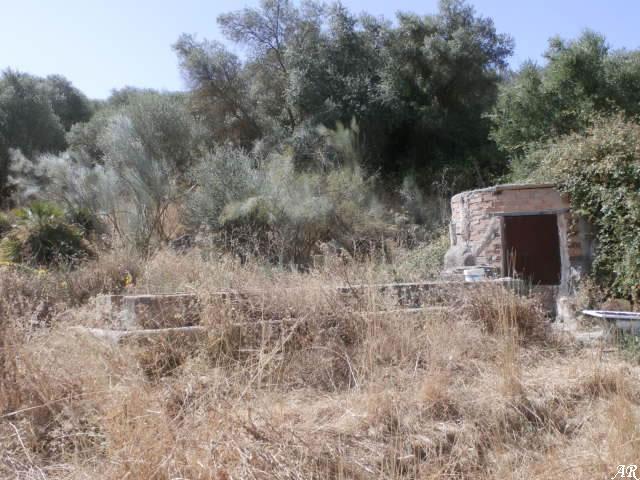 Pozo del Cortijo El Campillo - Almogía - Abrevadero del Cortijo El Campillo