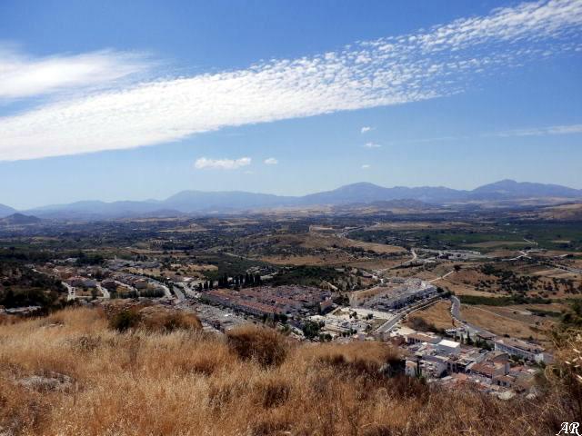 Vega del Guadalhorce