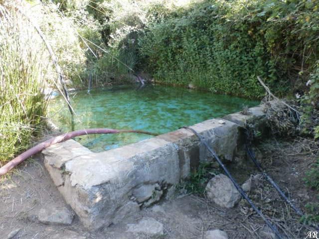 Moña Fountain - Spring - Casares