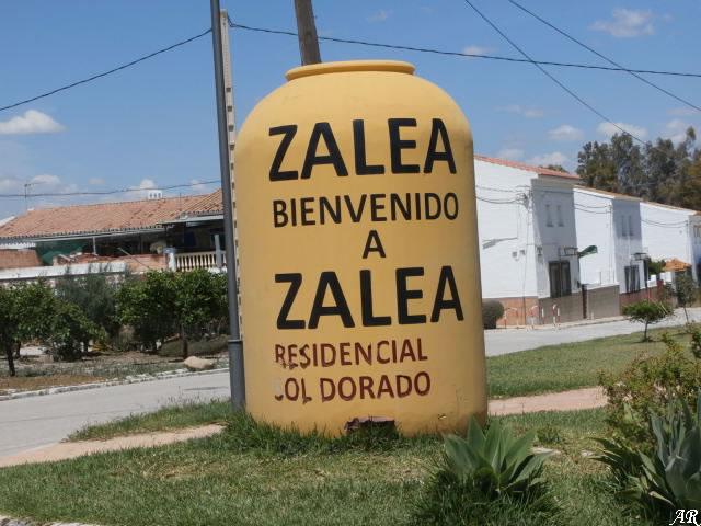 Zalea - Pizarra