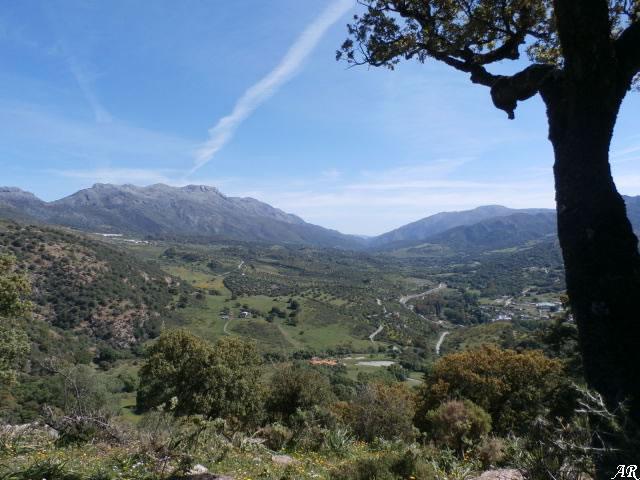 Valle del Guadiaro desde la Torre del Paso