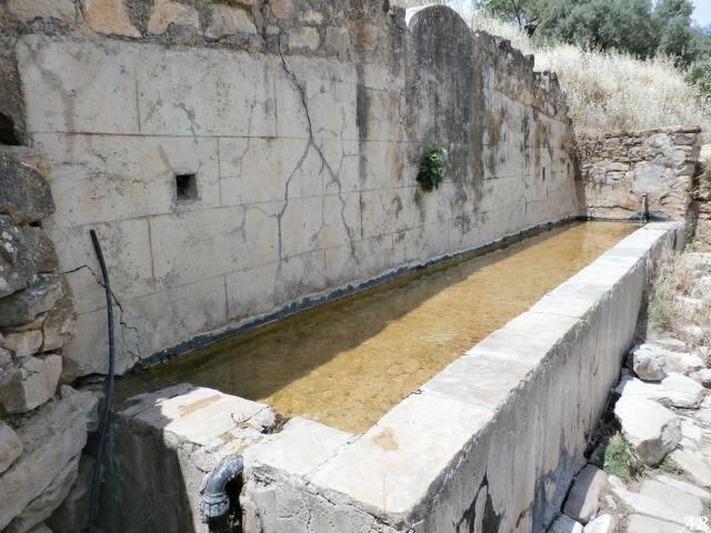 Fuente del Caño del Conde - Ardales