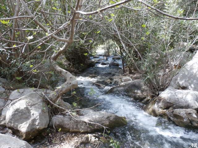 istan-nacimiento-rio-molinos