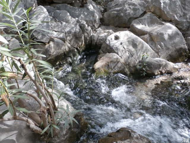 River Molinos - Istán