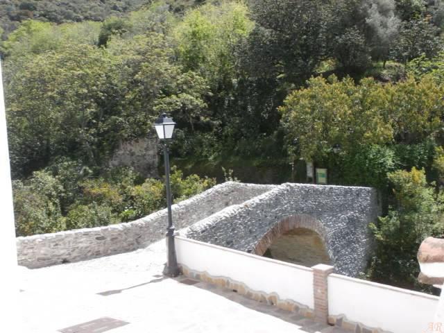 Puente Árabe de Salares