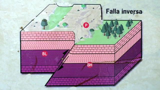 Falla Inversa - Parque Natural Sierra de Grazalema