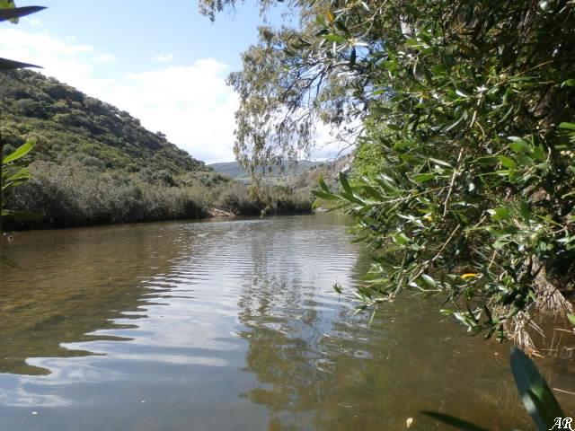 Río Hozgarganta - Parque Natural de los Alcornocales