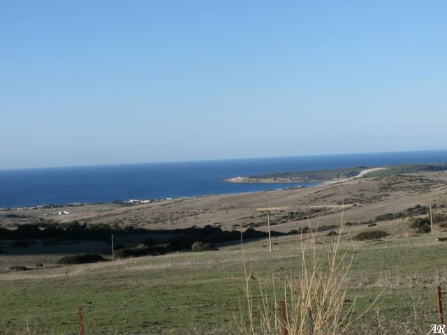Parque Natural del Estrecho - Algeciras - Tarifa