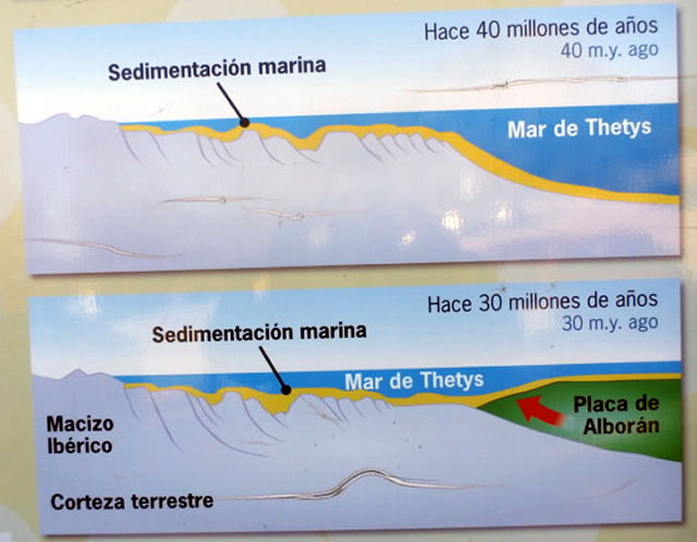 Complejo Subbético - Parque Natural Sierra de Grazalema