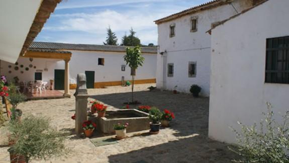 finca de olivar con cortijo en Alcaracejos Cordoba