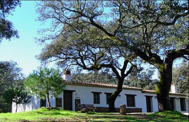 Finca con casas rurales en la sierra de aracena huelva - Rehabilitacion de casas rurales ...