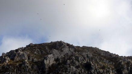Paraje Natural de Sierra Crestellina - Casares