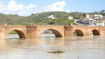 Puente de las Doncellas o de las Donadas - Montoro - Puente Mayor