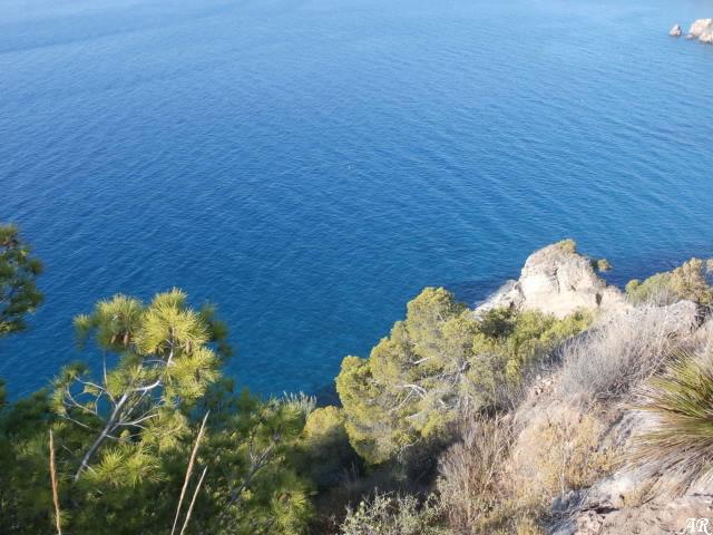 Paraje Natural Acantilados de Maro - Cerro Gordo