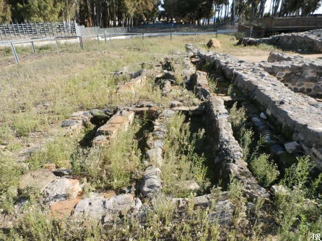 Basílica Paleocristiana Vega del Mar - Tumbas