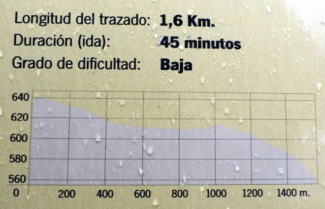 Sendero Los Llanos del Berral - Grazalema