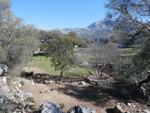 Foro del Yacimiento Arqueológico de Ocuri