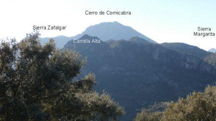 Mirador Puerto de los Acebuches - Grazalema