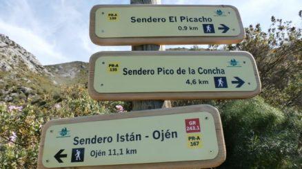 Sendero El Picacho - Trail