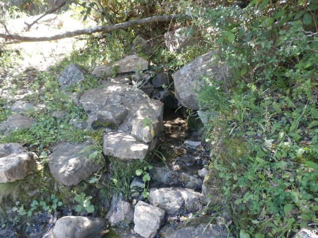 Cortes de la Frontera - Fuente de las Dueñas