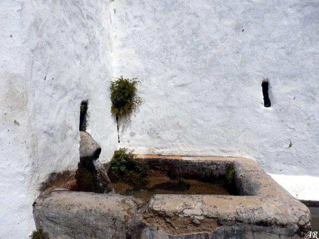 Algatocín - Fuente Las Pilas - Abrevadero - Fuente de San Isidro Labrador