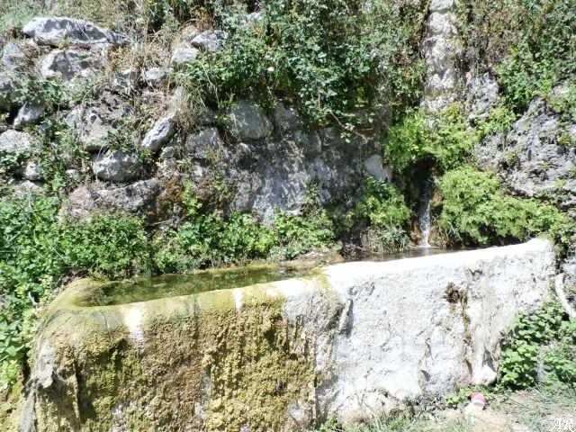 Manantial Los Nacimientillos - Algatocín - Abrevadero